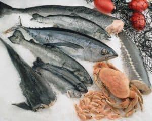 eat fish, junk food makes you insane!